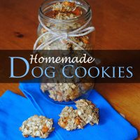 Homemade Sweet Potato, Banana, and Oatmeal Dog Treats