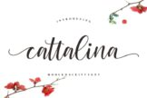 Last preview image of Cattalina – Beauty Font