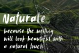Last preview image of Naturale