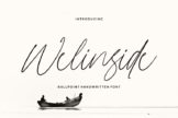 Last preview image of Welinside – Handwritten Font