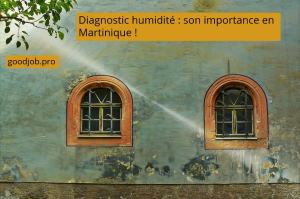 diagnostic-humidite-important-martinique