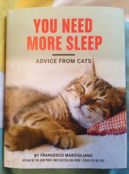 Cat Book 1