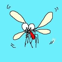 デング熱を予防する蚊!?昨年674人が死亡したブラジルでの試みとは!