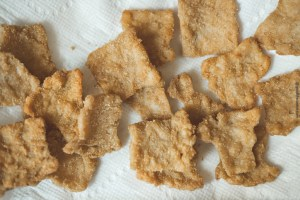 Textured soy protein shallow fried
