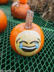 Laughing Emoiji
