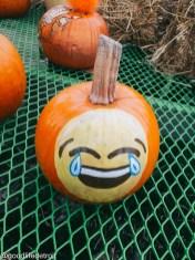 Laughing Emoiji
