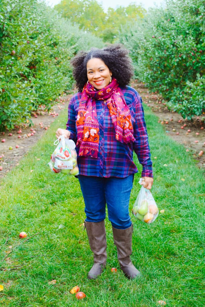 Apple Picking at Westview Orchards and Winery in Michigan