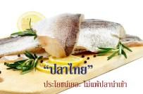 ปลา, กินปลา, ปลาทะเล, ปลาไทย, อาหารทะเล, อาหาเพื่อสุขภาพ