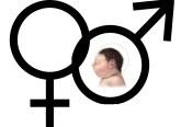 เพศสัมพันธ์, เซ็กซ์, sex, งานวิจัย, โรคซิกา, ไวรัสซิกา, ซิก้า, สมองเล็ก, Zika