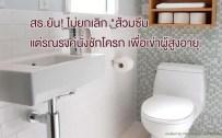 ส้วมซึม, ชักโครก, ห้องน้ำสำหรับผู้สูงอายุ, สวัสดิการผู้สูงอายุ, ห้องน้ำ, flush toilet
