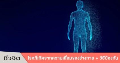 ความเสื่อมของร่างกาย, โรคที่เกิดจากความเสื่อมของร่างกาย, ชะลอความเสื่อม