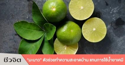 มะนาว, ทำความสะอาดบ้าน, ประโยชน์ของมะนาว, ดับกลิ่น, ขจัดคราบไขมัน