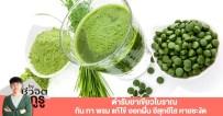 ยาเขียว, แก้ไข้, อีสุกอีใส, กินยาเขียว, ประโยชน์ของยาเขียว