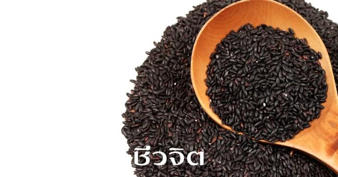งาดำ, ผลิตภัณฑ์จากงาดำ, กินงาดำ, ประโยชน์ของงาดำ, กินงาดำให้ได้ประโยชน์