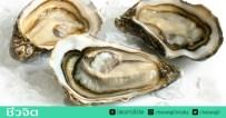 หอยนางรม, หอยนางรมสด, อาหารทะเล, เชื้อวิบริโอ