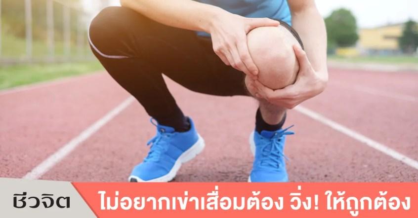 การวิ่ง- วิ่ง-ออกกำลังกาย