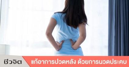 แก้อาการปวดหลัง, รักษาอาการปวดหลัง, ปวดหลัง, นวดแก้ปวด, ประคบร้อน, ประคบเย็น