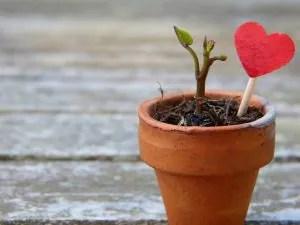 ข้อคิดความรัก