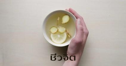 ชาสมุนไพร, กระตุ้นระบบภูมิคุ้มกัน, ชา, สมุนไพร, สูตรชาสมุนไพร
