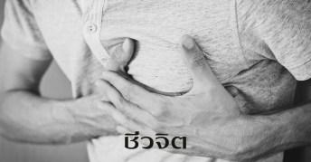 ปวด, ปวดกล้ามเนื้อ, ปวดไหล่, ปวดไมเกรน, แพทย์แผนไทย