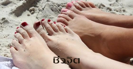 ดูแลฝ่าเท้า, นวดเท้า, ฝ่าเท้า, แช่น้ำอุ่น, เท้า