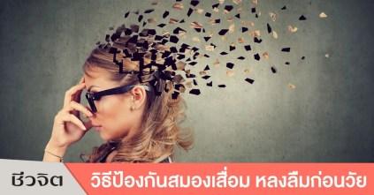 ป้องกันอัลไซเมอร์, สมองเสื่อม, ขี้หลงขี้ลืม, ฝึกสมองประลองเชาวน์, ออกกำลังกายสมองเสื่อมช้า