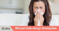 คัดจมูก, หวัด, ไข้หวัด, ภูมิแพ้, โรคภูมิแพ้, แก้คัดจมูก