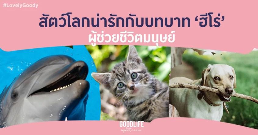 เรื่องน่ารัก เรื่องน่ารู้ สัตว์โลกน่ารัก