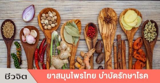 ยาสมุนไพรไทย, สมุนไพร, สมุนไพรไทย, ยาแผนโบราณ, แพทย์แผนไทย