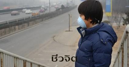 ฝุ่นละออง PM 2.5, วิธีป้องกัน ฝุ่นละออง PM 2.5, ฝุ่นละอองขนาดเล็ก, ฝุ่น