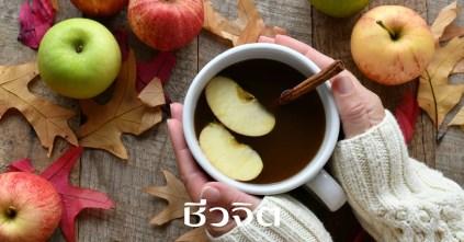 แอปเปิ้ลไซเดอร์, แอปเปิ้ลไซเดอร์วินีการ์, apple cider