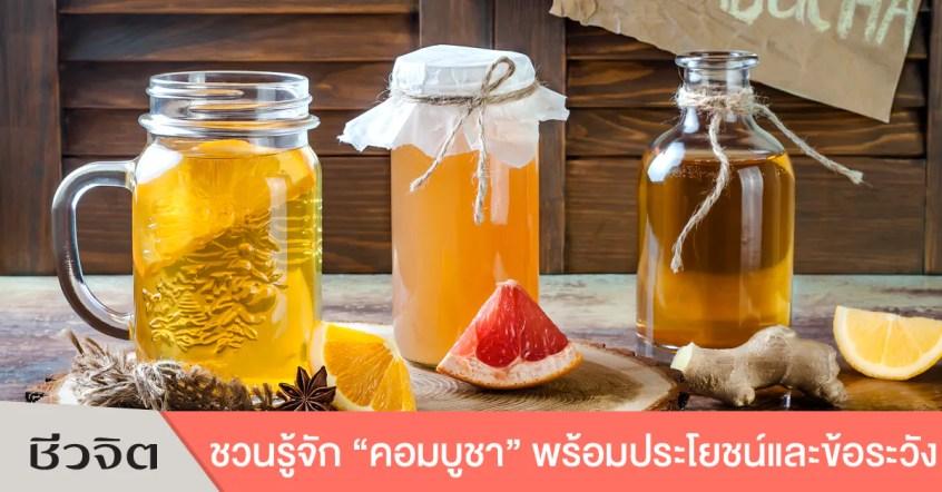 kombucha,คอมบูชา,คอมบูฉะ,ชาหมัก,ชาหมักเพื่อสุขภาพ,เครื่องดื่มเพื่อสุขภาพ