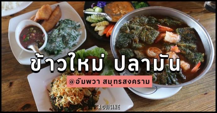 อัมพวา-ร้านอาหาร-เที่ยวอัมพวา-ชะคราม