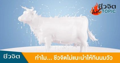 นมวัว แพ้นมวัว ห้ามกินนมวัว ไม่กินนมวัว ภูมิแพ้