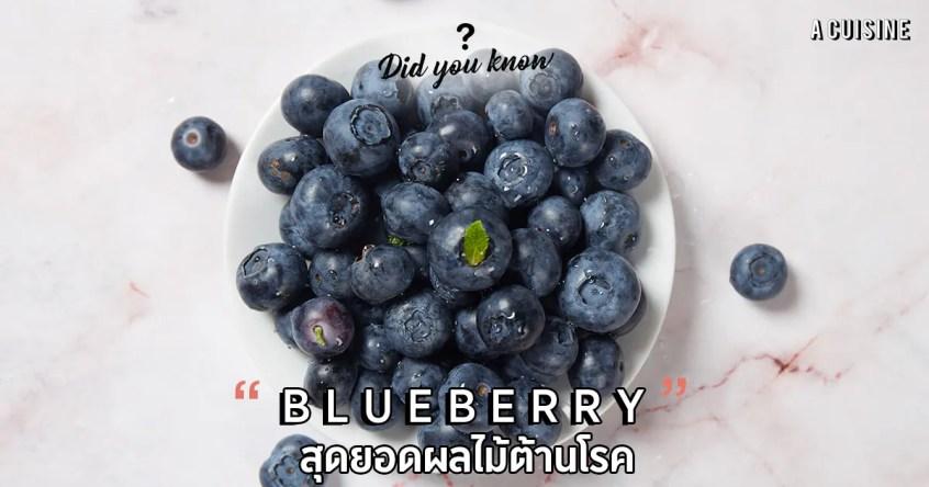 บลูเบอร์รี่ Blueberry