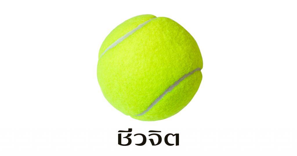 ลูกเทนนิส กินผลไม้เท่าไร