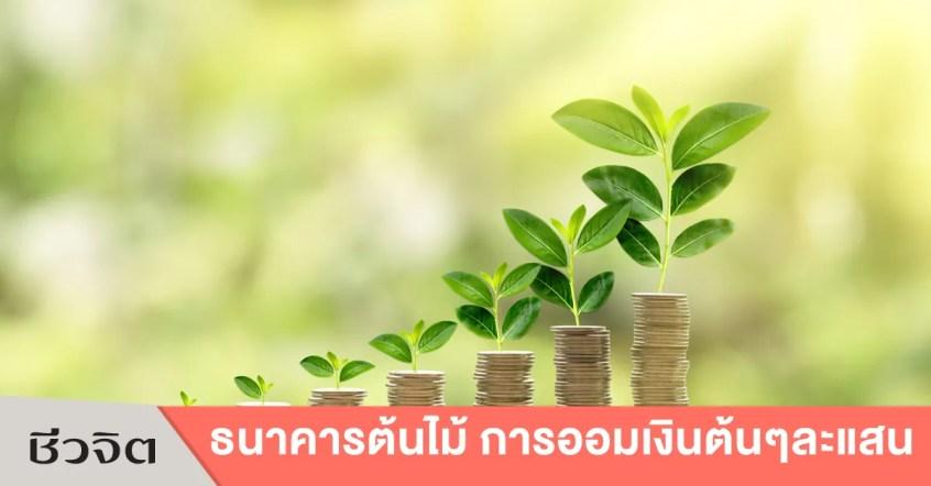 ธนาคารต้นไม้ ออมเงิน