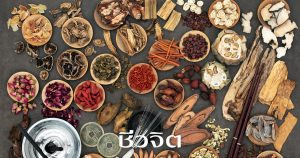 กินอาหารเป็นยา เครื่องยาจีน อาหารจีน สมุนไพรจีน แพทย์แผนจีน แพทย์จีน ยาจีน