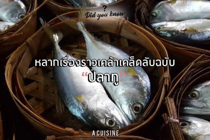 ปลาทู