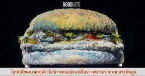 ไอเดียโฆษณาสุดเจ๋ง! Burger King โชว์ภาพ เบอร์เกอร์ขึ้นรา ปราศจากสารกันบูด