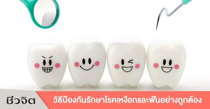 สุขภาพฟัน ฟันและเหงือก ฟัน เหงือก ช่องปาก ปาก