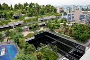 สัมผัสอ้อมกอดแห่งธรรมชาติ กับ 10 ที่เที่ยวในสิงคโปร์