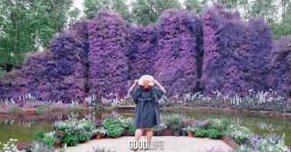 RakDok Floral Destination
