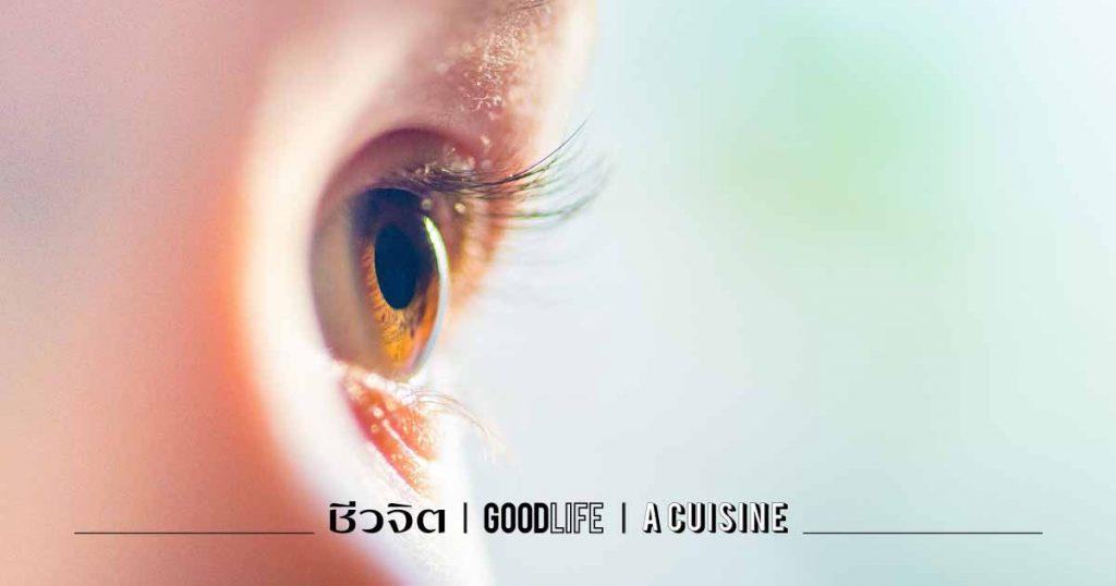 วิตามิน ดวงตา วิตามินบี 3 ตาบอด สายตา