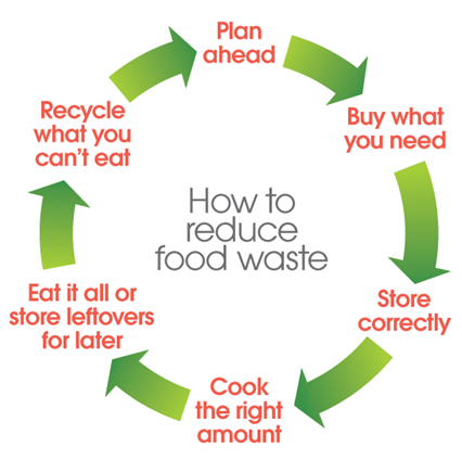 food loop for consumers 0
