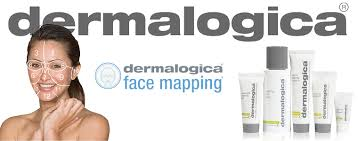 Face Mapping with Dermalogica - Good Life Vancouver on