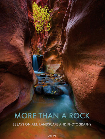More Than a Rock cover image