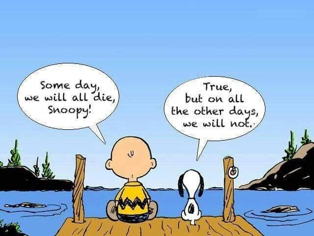 perception - charlie brown and snoopy