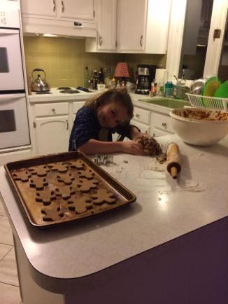 Gingerbread Trouper!