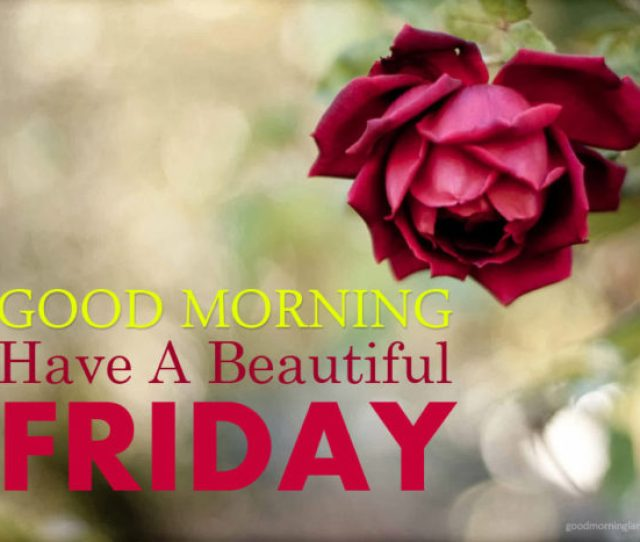 Best Good Morning Friday Have A Beautiful  Good Morning Images Quotes Wishes